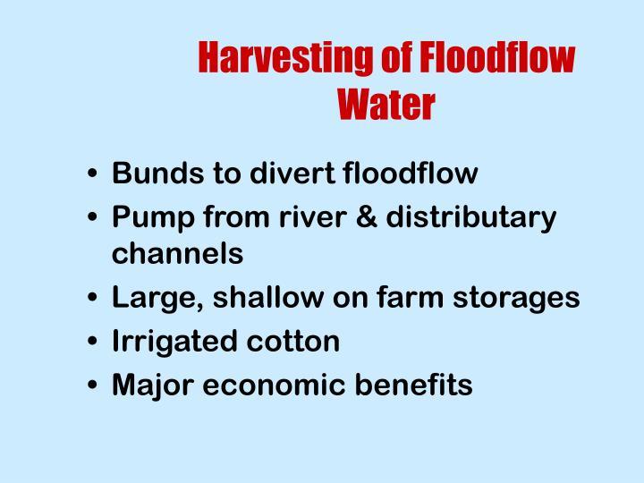 Harvesting of Floodflow Water