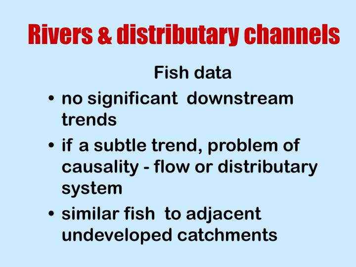 Rivers & distributary channels