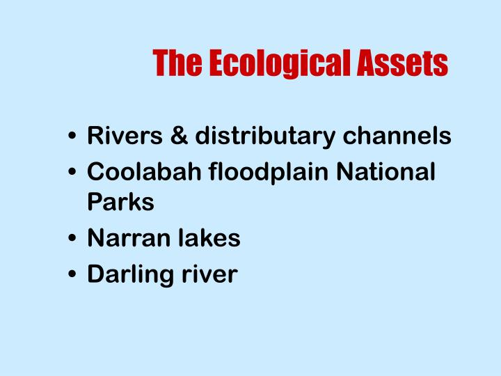 The Ecological Assets