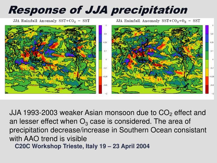Response of JJA precipitation