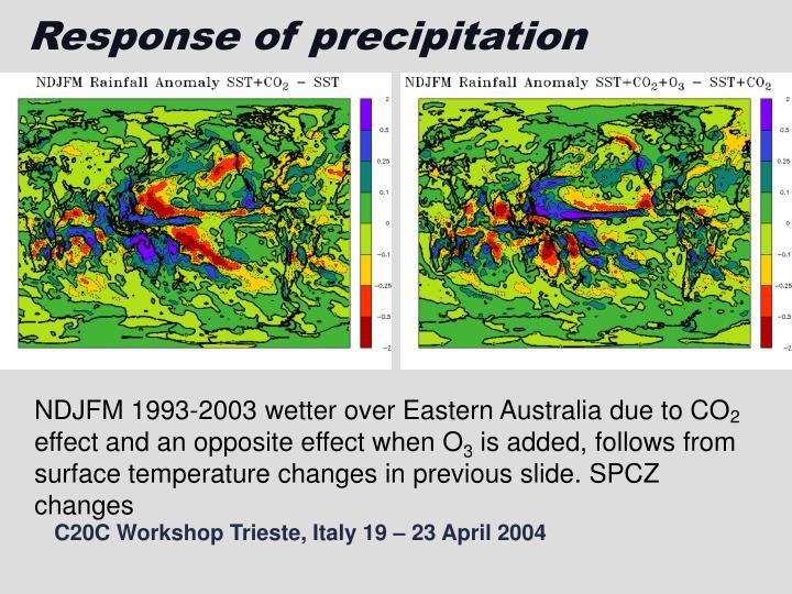 Response of precipitation