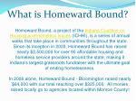what is homeward bound