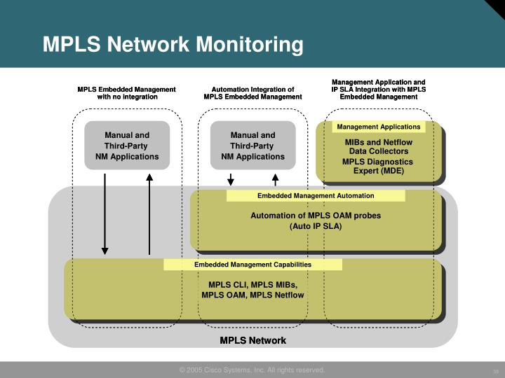 MPLS Network Monitoring