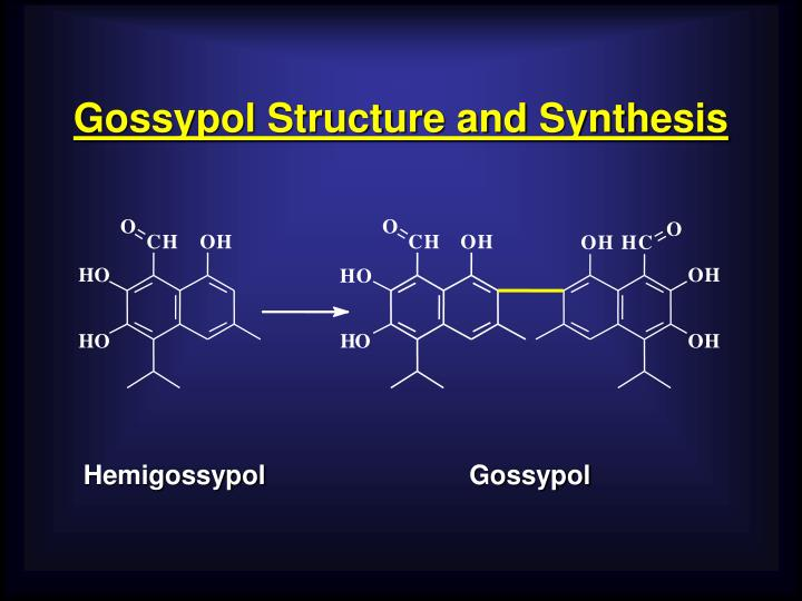 Gossypol structure and synthesis