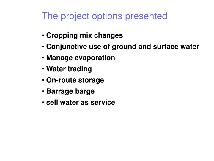 The project options presented