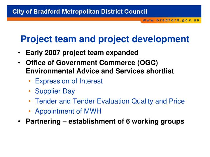 Project team and project development