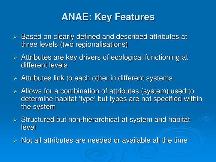 ANAE: Key Features