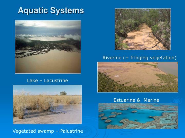 Aquatic Systems