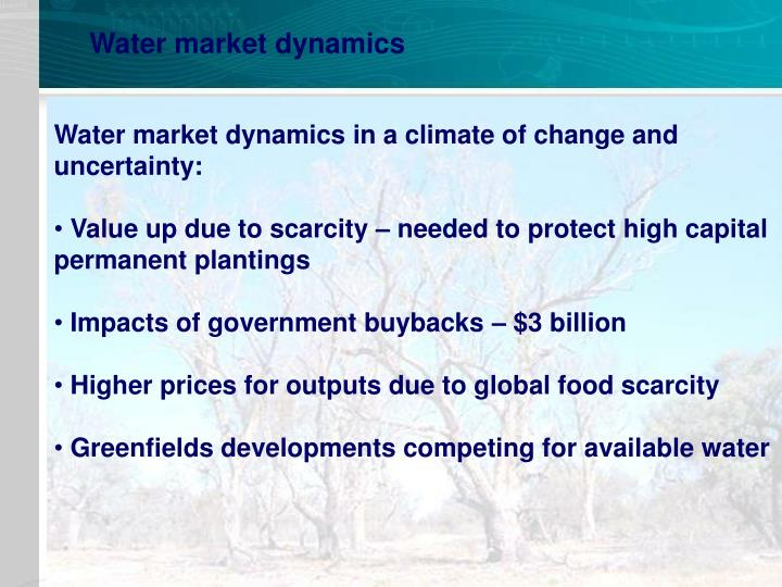 Water market dynamics
