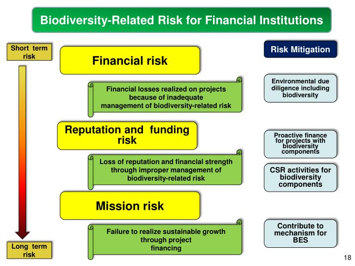 Biodiversity-Related Risk for Financial Institutions