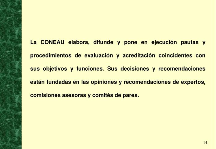 La CONEAU elabora, difunde y pone en ejecución pautas y procedimientos de evaluación y acreditación coincidentes con sus objetivos y funciones. Sus decisiones y recomendaciones están fundadas en las opiniones y recomendaciones de expertos, comisiones asesoras y comités de pares.