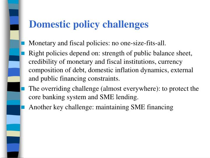 Domestic policy challenges