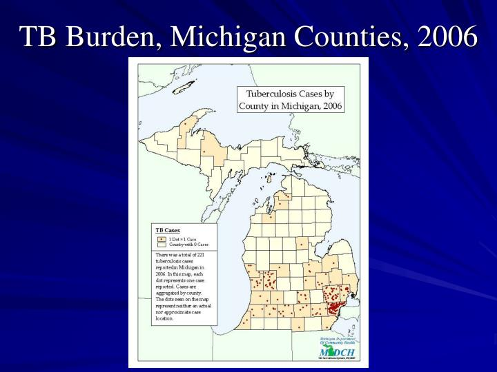 TB Burden, Michigan Counties, 2006