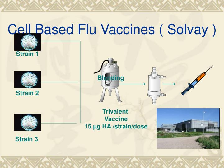Cell Based Flu Vaccines ( Solvay )