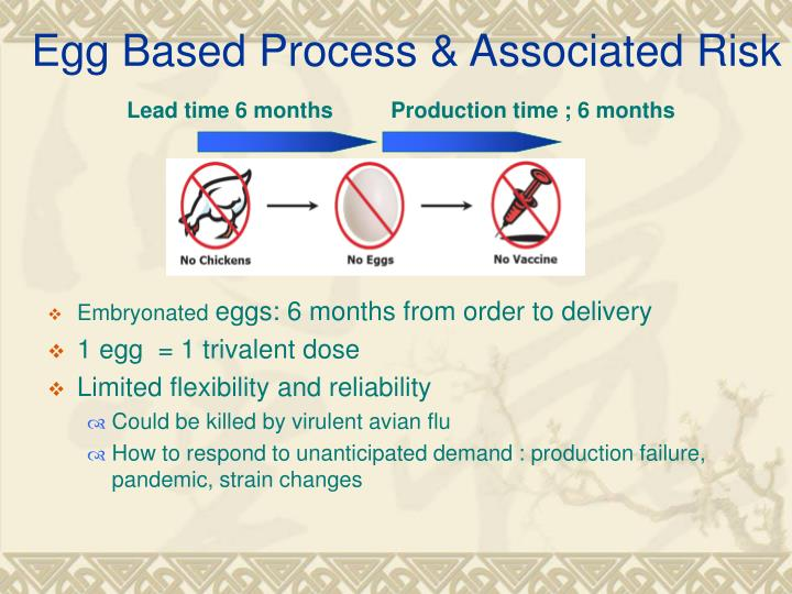 Egg Based Process & Associated Risk