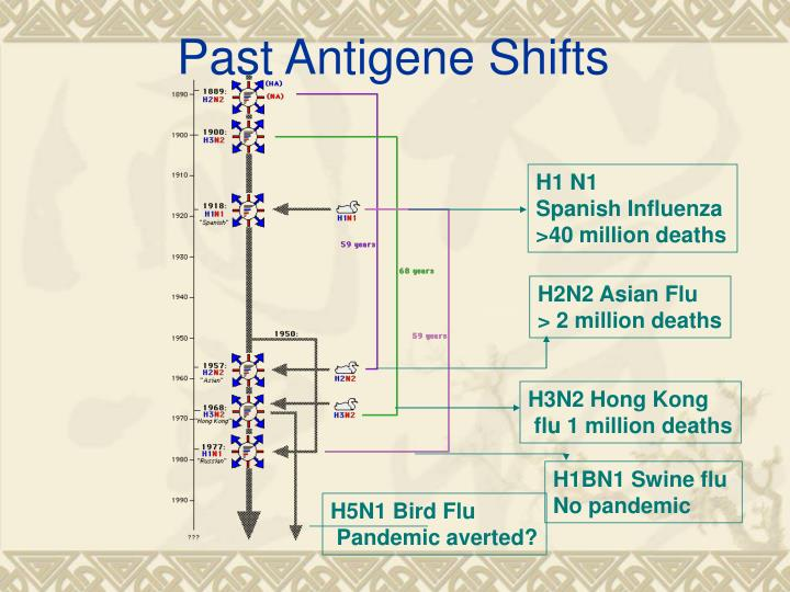 Past Antigene Shifts