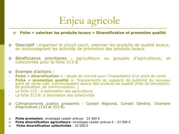 Enjeu agricole