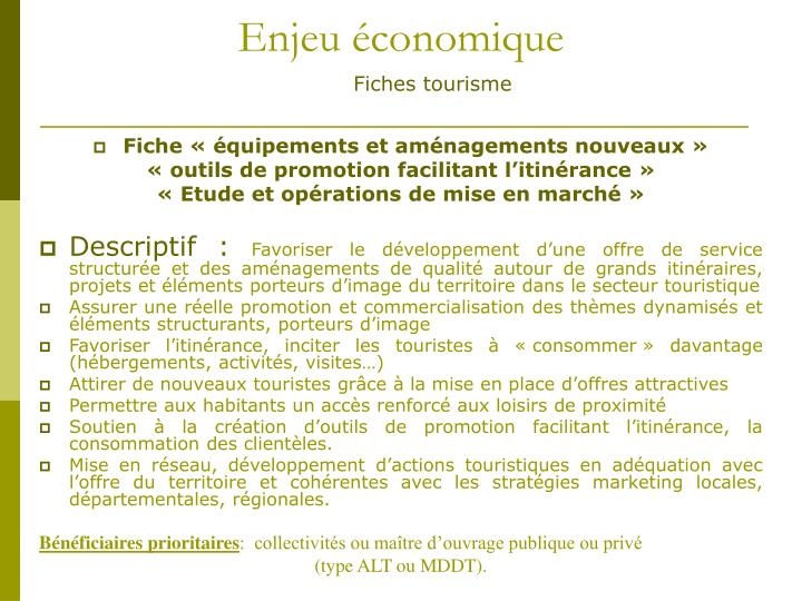 Enjeu économique