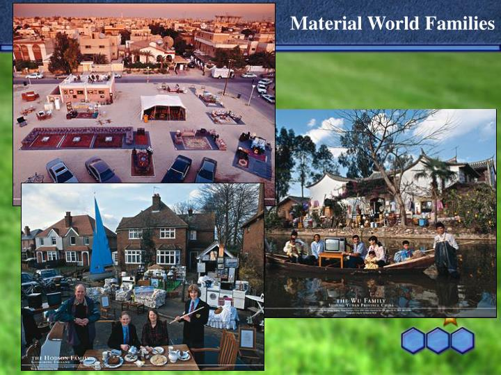 Material World Families