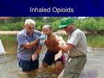 inhaled opioids