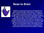 nose to brain