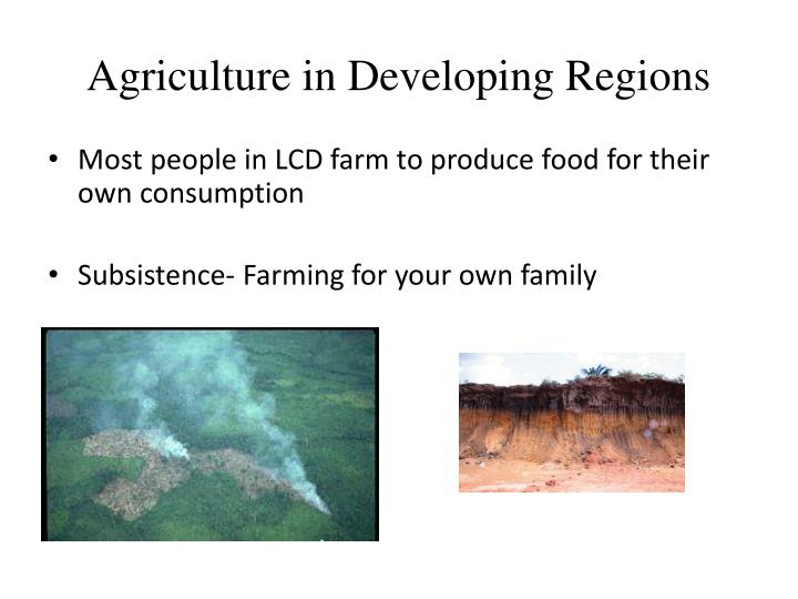 Agriculture in developing regions