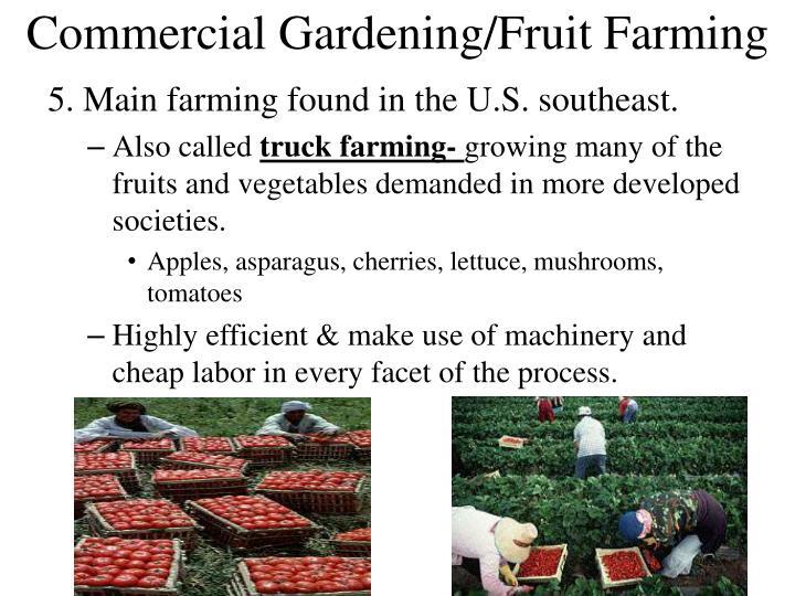 Commercial Gardening/Fruit Farming
