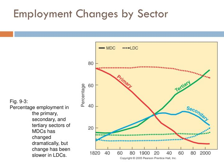 Employment Changes by Sector