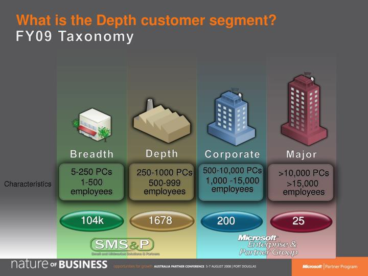 What is the depth customer segment