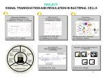 project signal transduction and regulation in bacterial cells