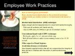 employee work practices1