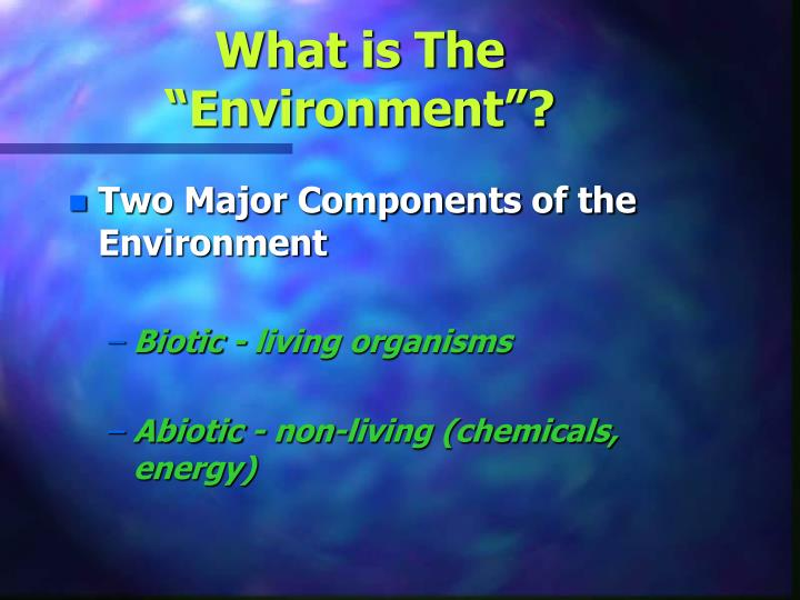What is the environment1