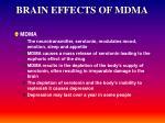 brain effects of mdma