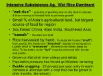 intensive subsistence ag wet rice dominant