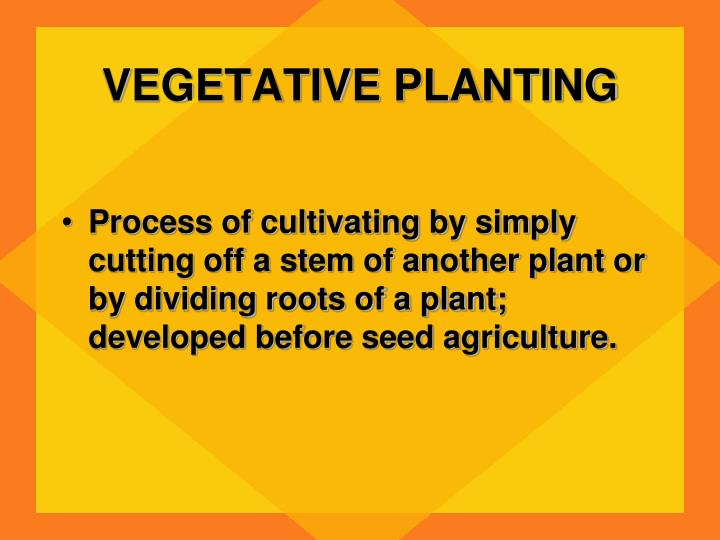 VEGETATIVE PLANTING