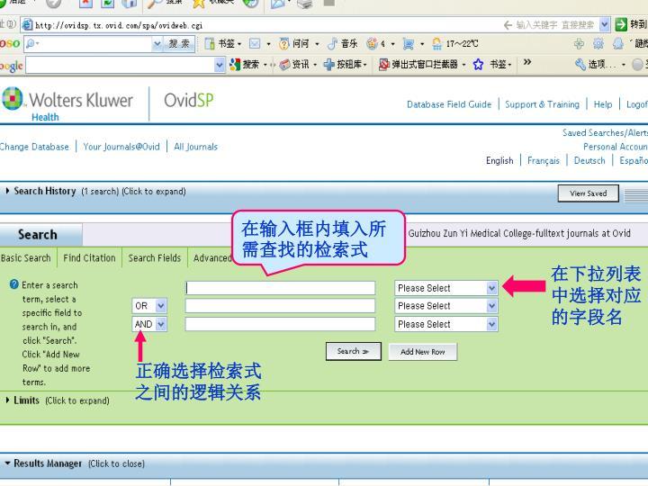 在输入框内填入所需查找的检索式