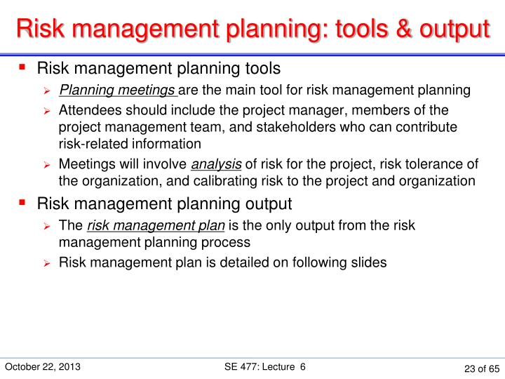 Risk management planning: tools & output
