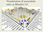 visualization of association rules in mineset 3 0