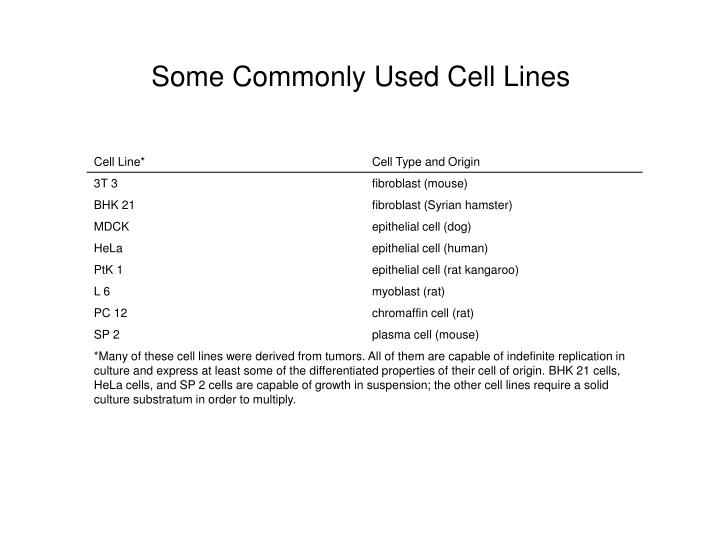 Some Commonly Used Cell Lines