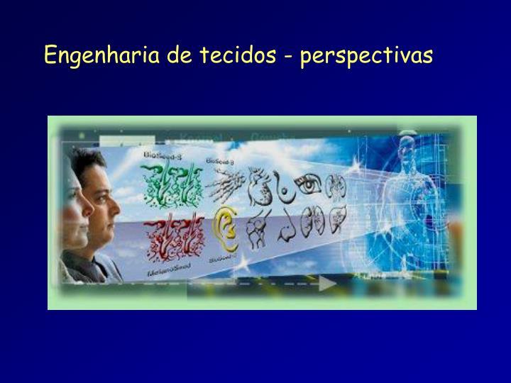 Engenharia de tecidos - perspectivas
