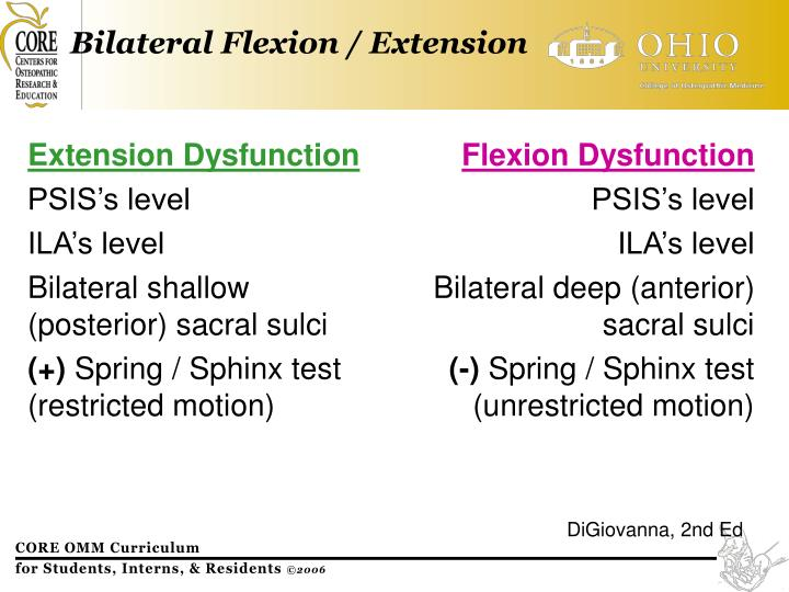 Bilateral Flexion / Extension