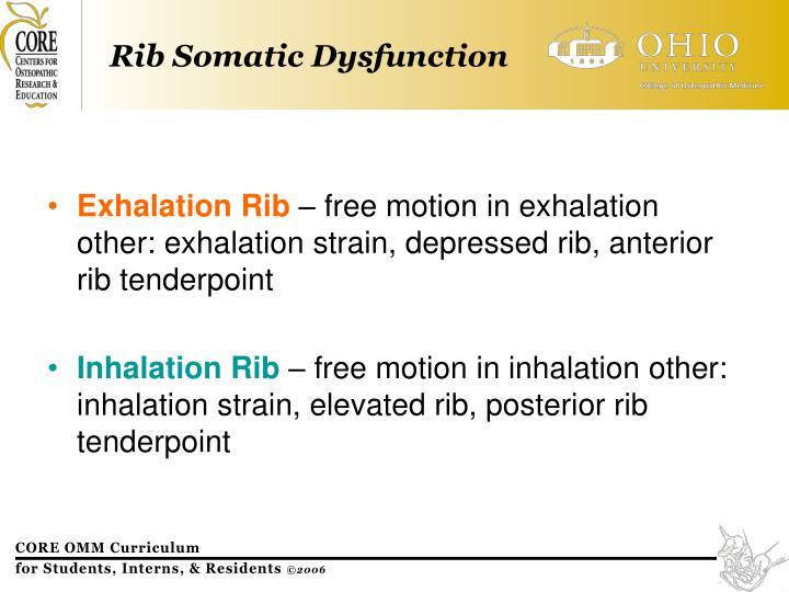 Exhalation Rib