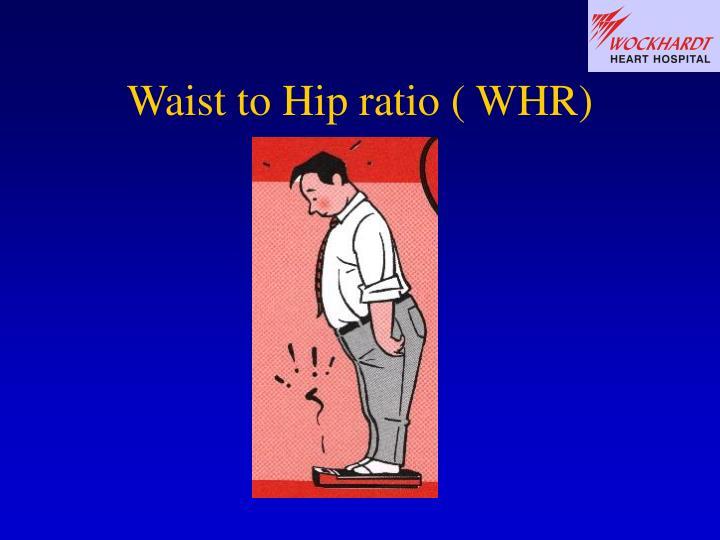 Waist to Hip ratio ( WHR)