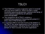 tslc1