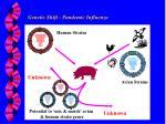genetic shift pandemic influenza