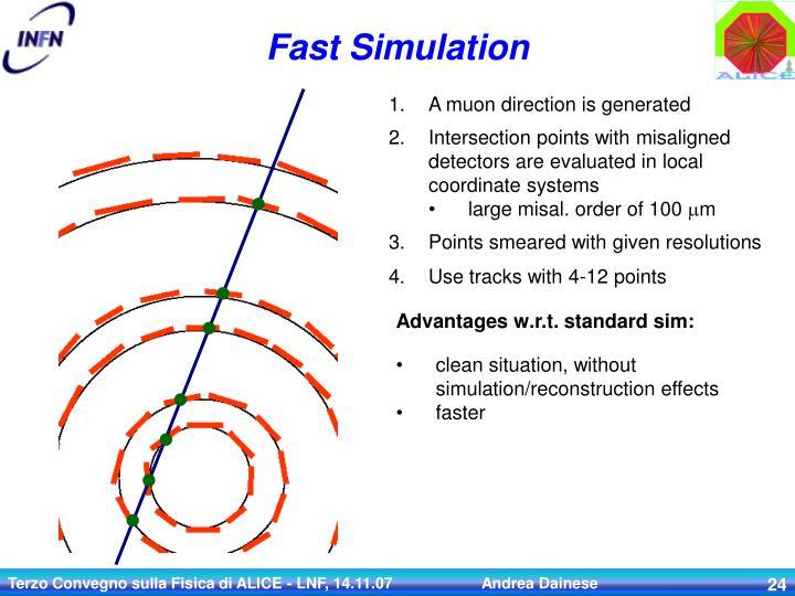 Fast Simulation