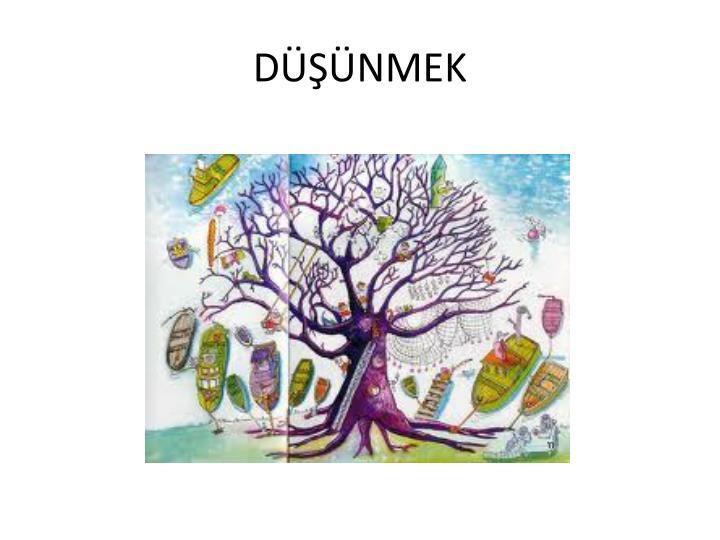 D nmek