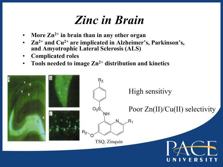 Zinc in brain