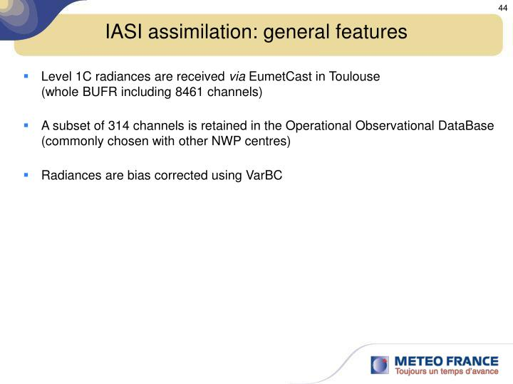 IASI assimilation: general features