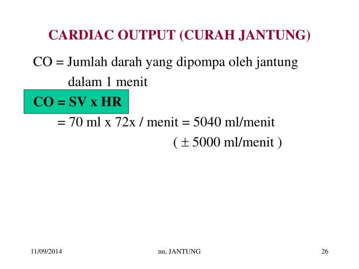 CARDIAC OUTPUT (CURAH JANTUNG)